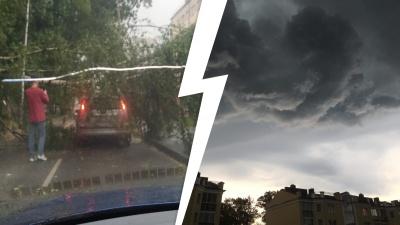Штормовой ветер валил деревья: гроза в Ярославле — самые яркие фото и видео