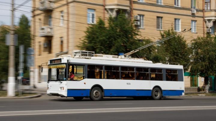 Мэрия Волгограда просит горожан игнорировать автобусы в пользу троллейбуса и трамваев