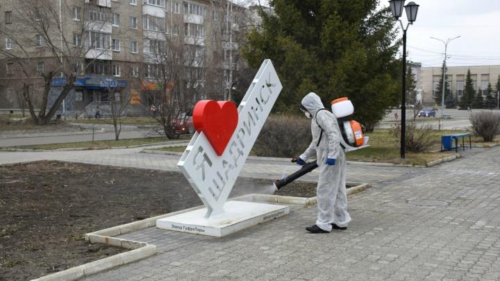 «Отреагировали оперативно»: власти Шадринска рассказали подробности о заболевшей студентке