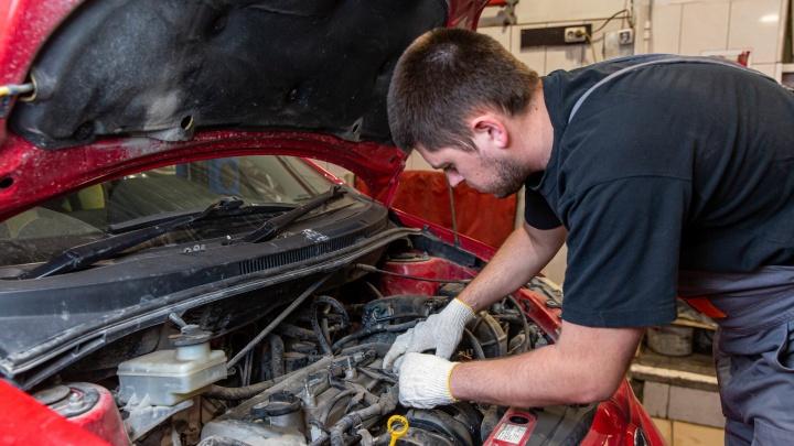 Спасайте ваши машины: под капотом мыши, в баке вода — последствия работы из дома