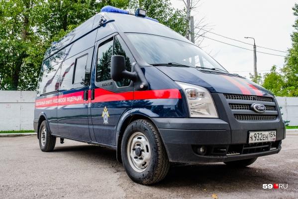 Массовое убийство предотвратили в Чердынском районе