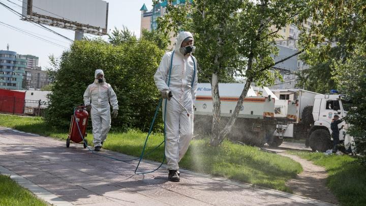 Первая дезинфекция парков и скверов: 8 кадров, как улицы Новосибирска вычищали от коронавируса
