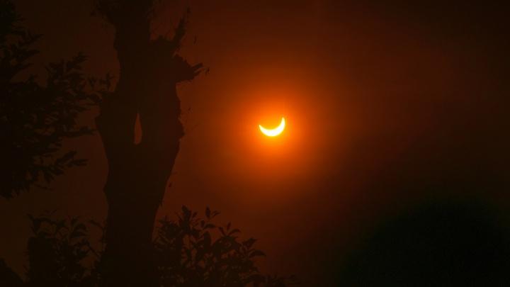 На выходных новосибирцев ждёт солнечное затмение и самый длинный день в году