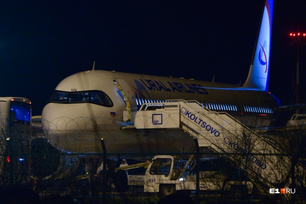 Вывозным рейсом в Россию вернулись 199 человек, но большая часть из них сошла в Новосибирске
