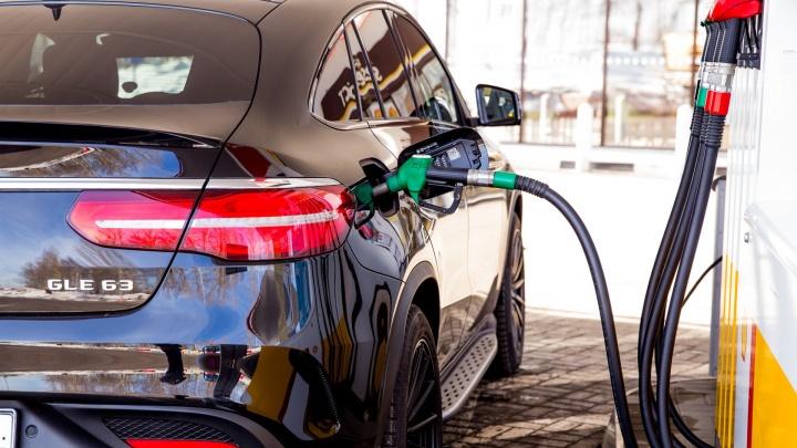 «Цены на бензин — это пирог из налогов»: владелец заправки о том, почему топливо не подешевеет