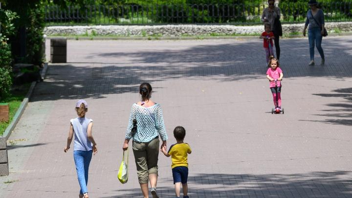 Для оформления путинских выплат на детей обязательно наличие СНИЛС. Как получить документ в пандемию