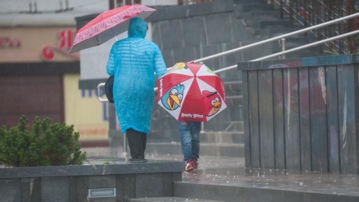 Лето кончилось? Какой будет погода в Екатеринбурге в ближайшие дни