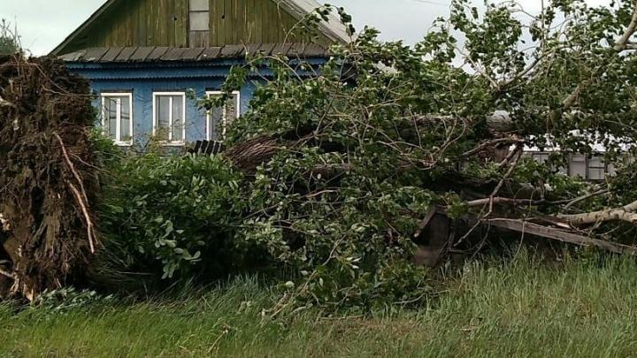 В Екатеринбурге погиб третий человек из-за урагана