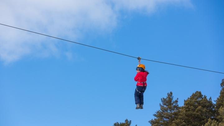 Как устроить детям необычные каникулы: в «Кулига-Парке» придумали, чем развлечь школьников