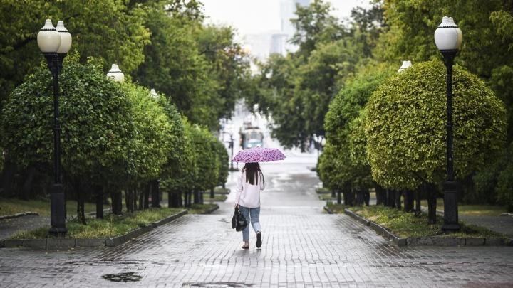Первая неделя августа принесет Екатеринбургу жару и грозы