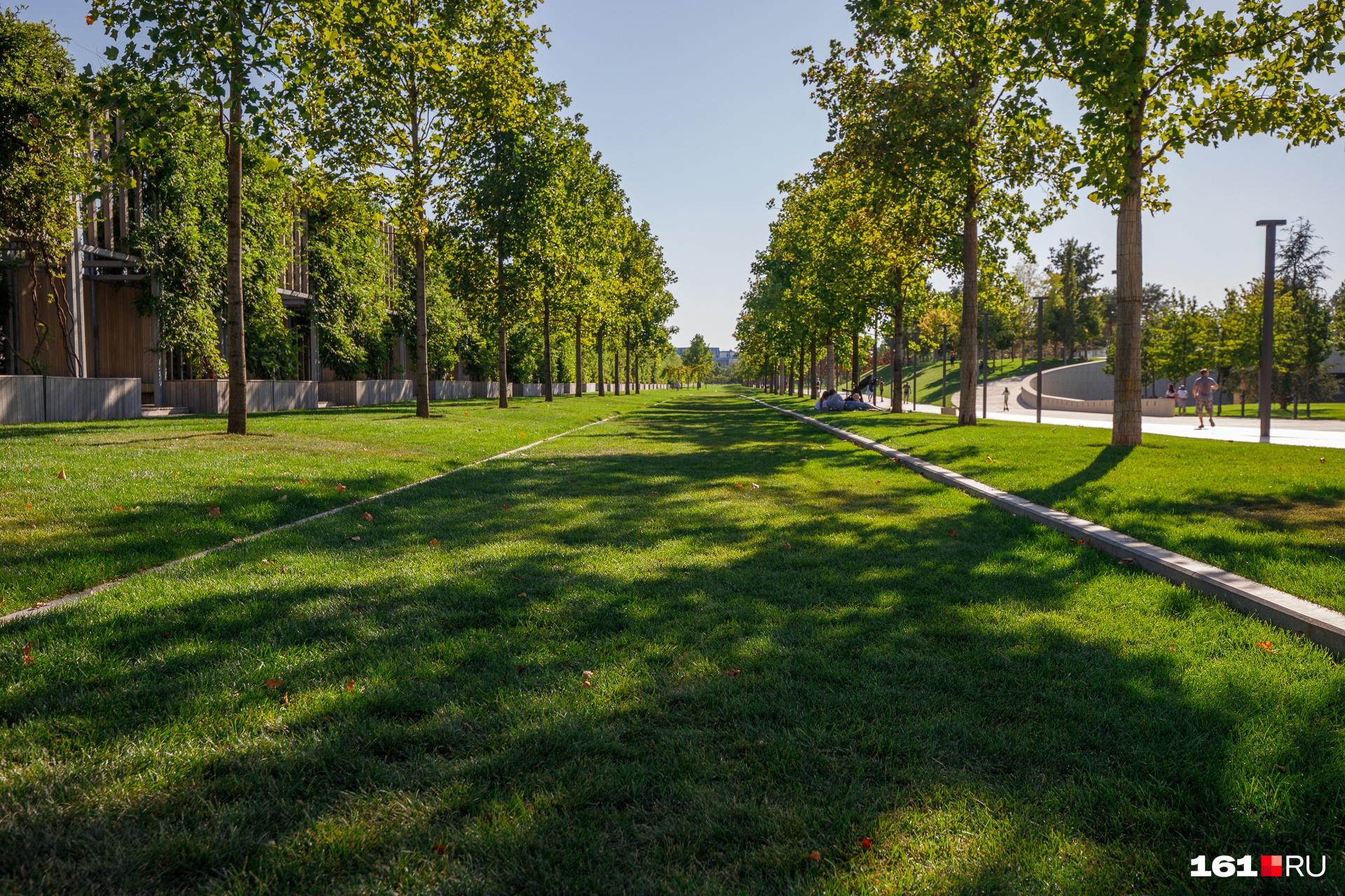 В парке много аккуратно подстриженных газонов