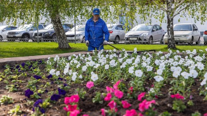 Последний каприз погоды: в Волгограде начинается весеннее потепление