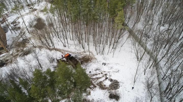 Городской застройщик остановил вырубку леса за парком Гафури в Уфе