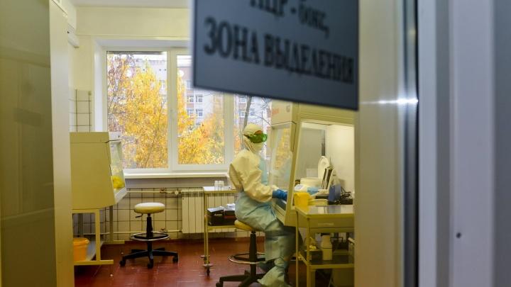 Оперштаб России сообщил о 246 новых случаях COVID-19 в Архангельской области за прошедшие сутки