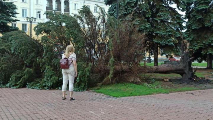Не расслабляемся! После урагана в Челябинской области МЧС предупредило о повторном ухудшении погоды