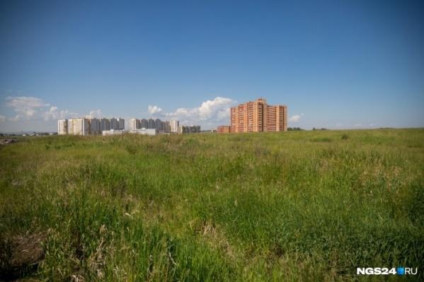 Красноярские предприниматели получили отсрочку наплатежи по аренде федеральной земли и имущества