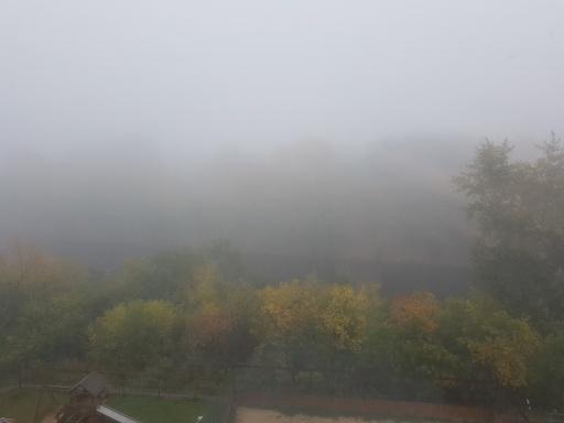 МЧС предупредило жителей Курганской области о густых туманах