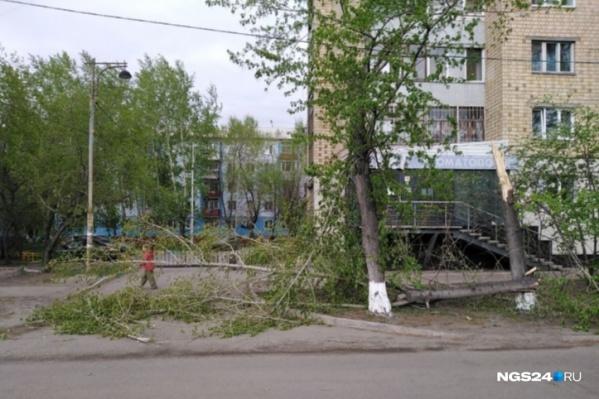 В Красноярскеобещают сильный ветер и дождь