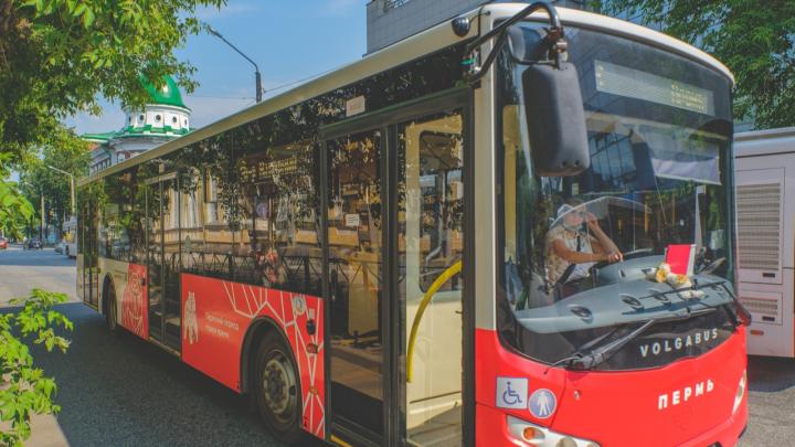 Как в Лондоне: дизайнер нарисовал новую схему движения общественного транспорта Перми