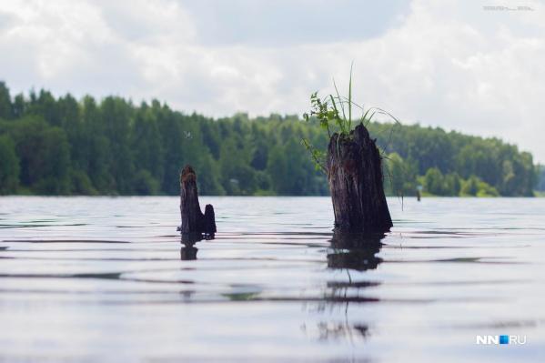 В Нижегородской области масса красивых озер. Рассказываем о некоторых из них