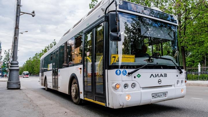 В Перми должны увеличить количество автобусов и трамваев на маршрутах