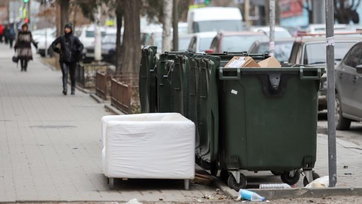 Тариф на вывоз мусора резко вырастет в Ростове