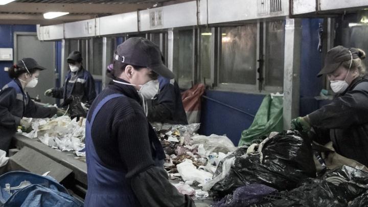 Руководство АМПК объяснило, почему уберёт контейнеры для раздельного сбора мусора