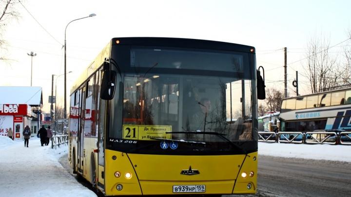 Администрация Перми объявила торги на обслуживание 5 автобусных маршрутов
