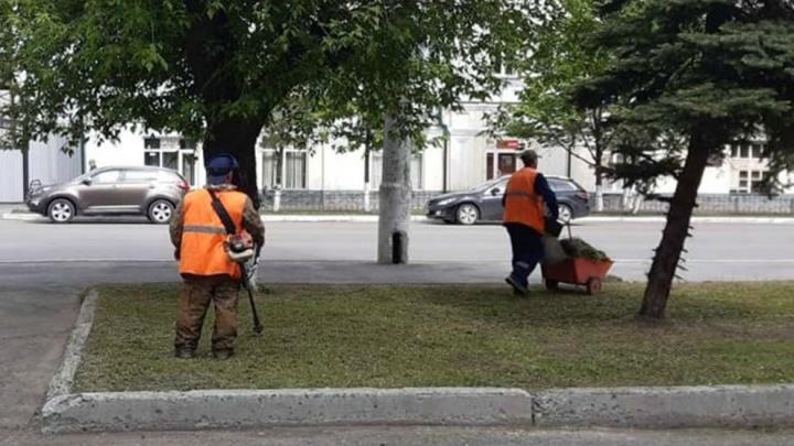 В Зауралье с апреля на общественные работы устроились более 400 человек