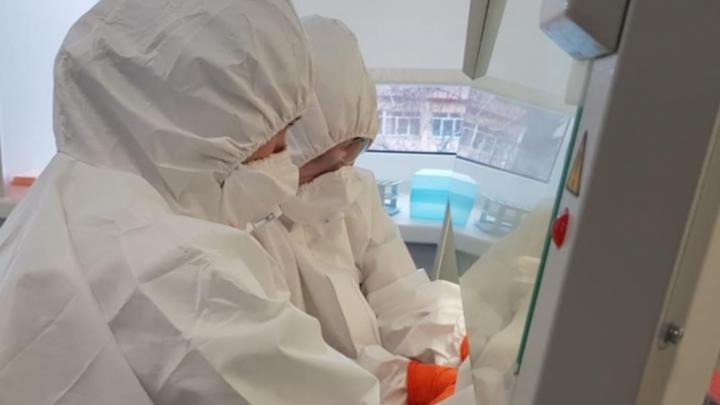 Хроника коронавируса в Башкирии: шестеро сотрудников РКБ сбежали домой из-под карантина