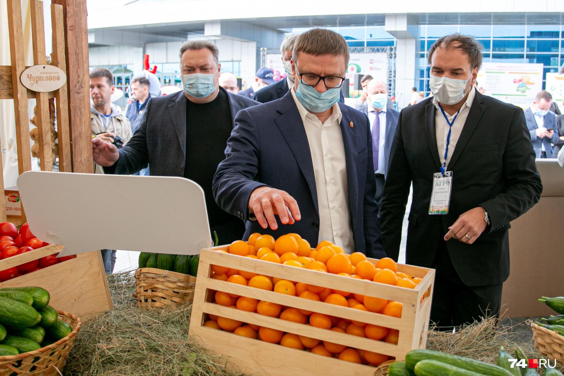Спорим, вы подумали, что это мандарины? На самом деле помидоры (чуриловские)