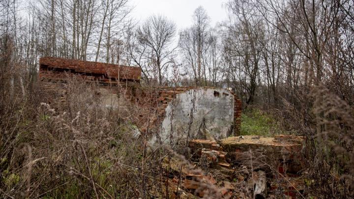 «Закрыто навсегда»: как выглядит заброшенный детский санаторий в Ярославской области