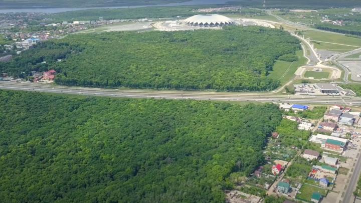 Лес посреди каменных джунглей: самарский видеоблогер снял с высоты окрестности «Самара Арены»