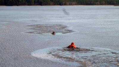 В Выксе спасатель в водолазном костюме вытащил собаку, провалившуюся под лед