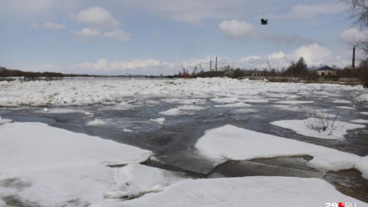 Ледоход на Северной Двине дошёл до Архангельска