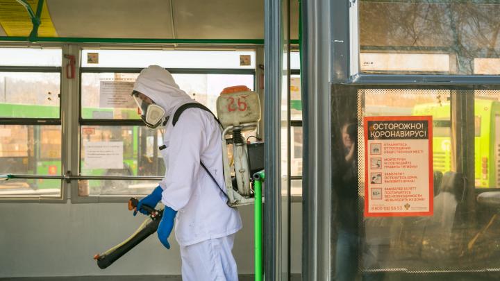 В Красноярске усилили дезинфекцию автобусов: как их сейчас моют