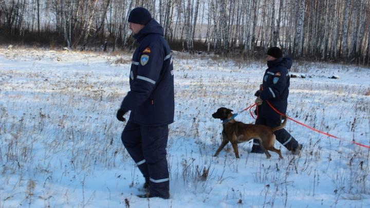 80-летний лыжник, всегда ходивший разными маршрутами, пропал в лесу в Челябинской области