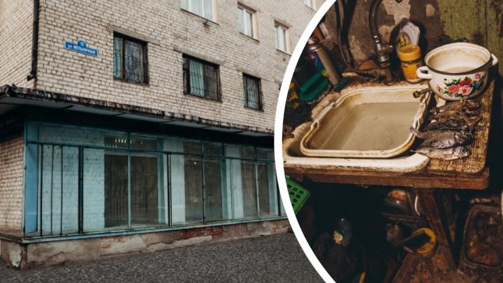 «О хомяке нам ничего не сказали». Как арендаторы уделывают съемные квартиры в Тюмени