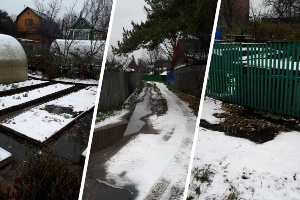 Сколько домов затоплено, в правлении СНТ сказать затрудняются, поскольку дачный сезон закончен и люди не приезжают на участки