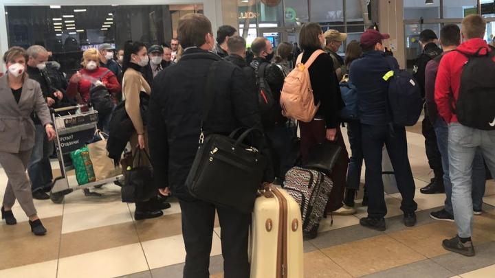 «Никакой дистанции соблюдать было невозможно»: в Толмачево собралась толпа пассажиров из Москвы