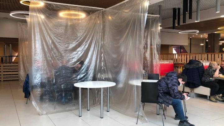 Кто не спрятался? Перегородки в ресторанах Екатеринбурга проверят полицейские и санитарные врачи