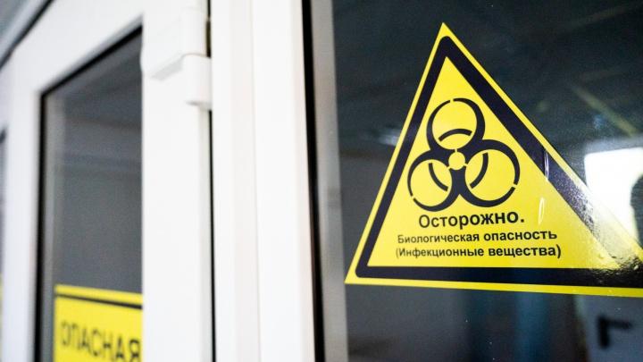 Еще 89 человек в Ростовской области заболели коронавирусной инфекцией