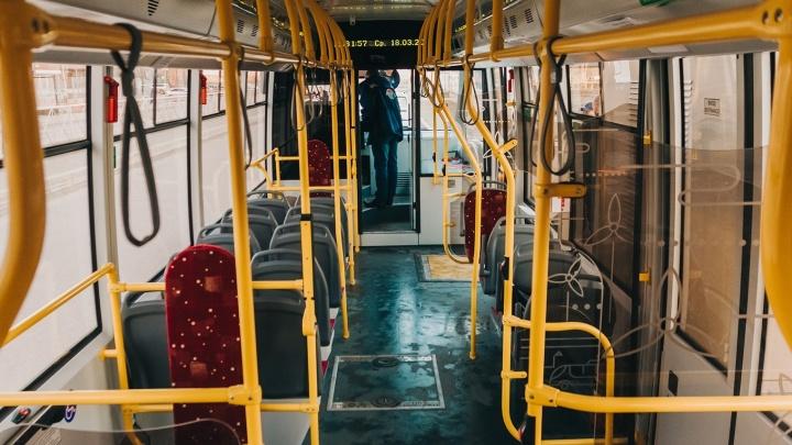 Электробус будет курсировать из Самары в Южный город до конца февраля