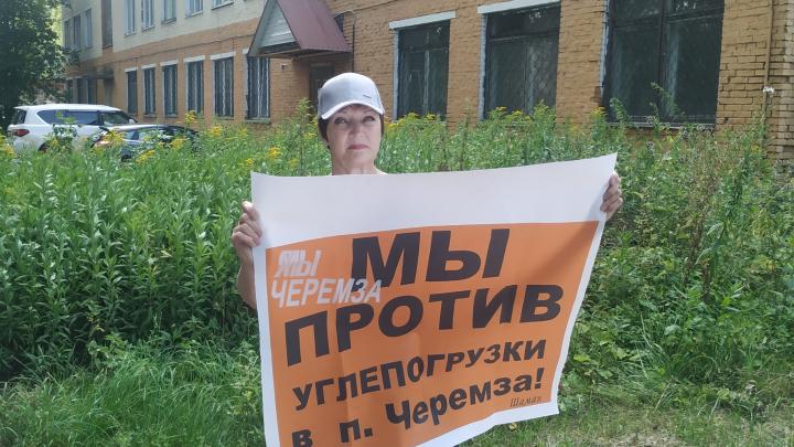 В трех городах Кузбасса прошли одиночные пикеты против строительства углепогрузки у поселка Черемза