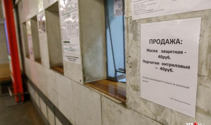 Мэрия Волгограда за сутки выдаст разрешение на торговлю масками