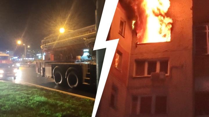 Эвакуировали 40 человек и спасли кошку: на Мельникайте загорелась квартира