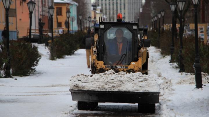 Поиски фирмы для уборки Архангельска в 2021-м приостановили из-за жалобы мурманского бизнесмена