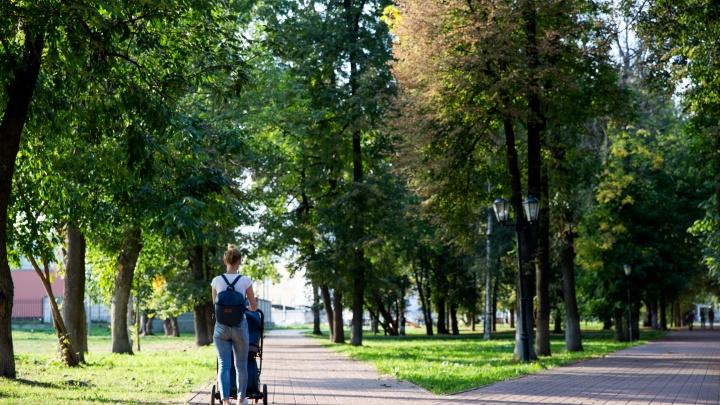 Вход в парки сделают платным: куда в Ярославской области можно будет попасть только за деньги