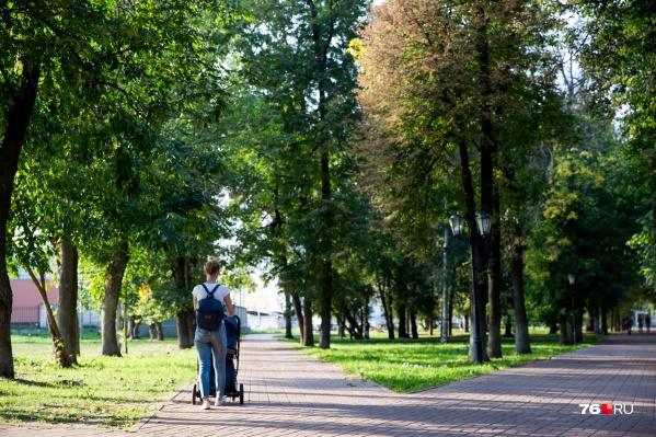 В Ярославской области готовятся к введению платы за посещение парков