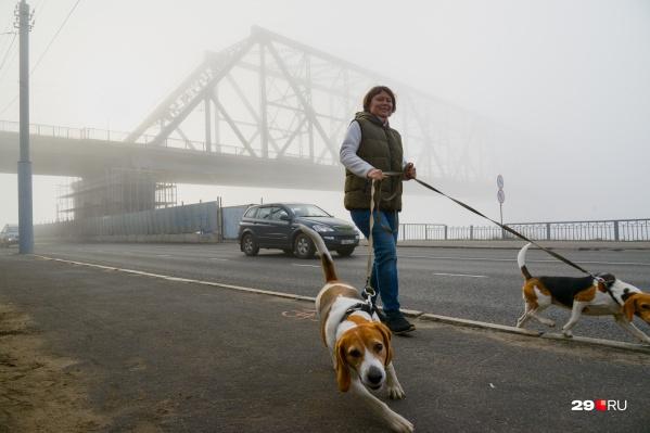 Мост закроют для ремонта в ближайшее воскресенье, проехать можно будет по Краснофлотскому мосту<br>